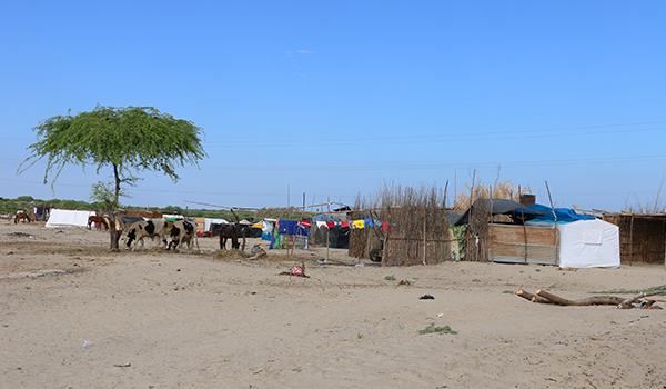 Visita-a-campamento-Nuevo-Santa-Rosa-4
